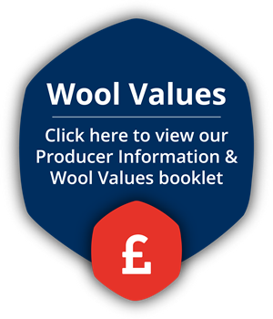 British Wool Values
