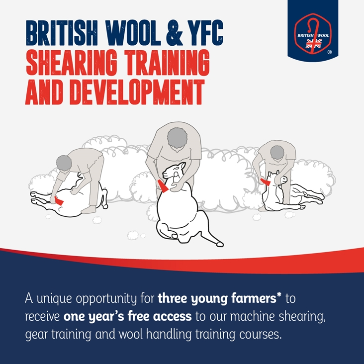 British Wool and young farmers gearing up for the shearing season