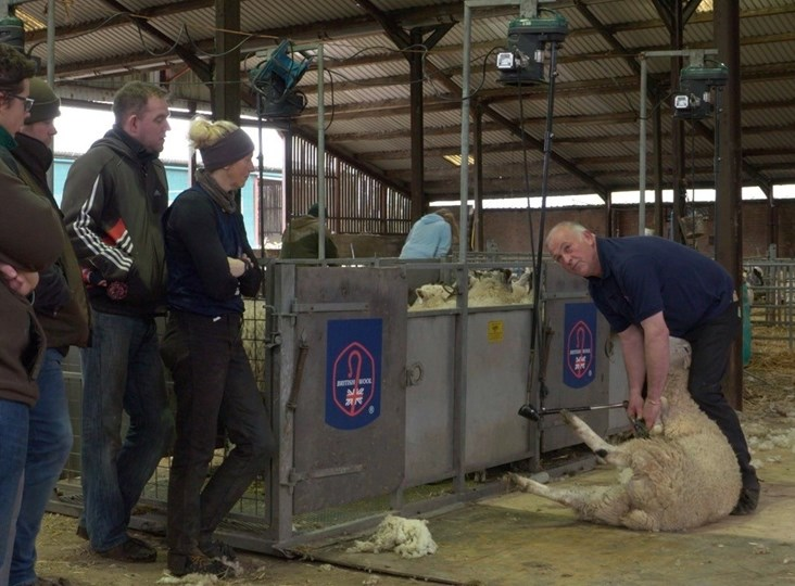 Shearing training designed to fit around you: Richard Schofield
