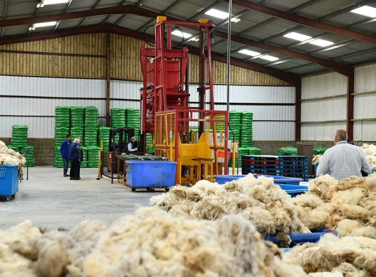 Wool Market Recovery Has Started