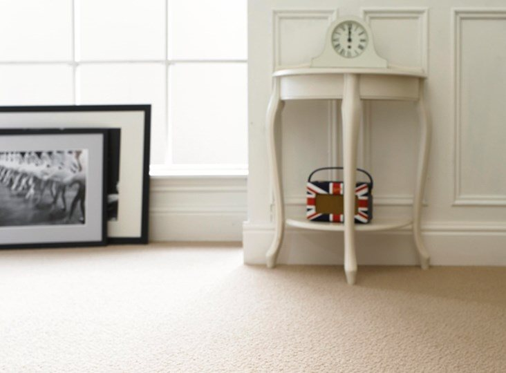 Taking care of your carpet: best practice, hints & tips