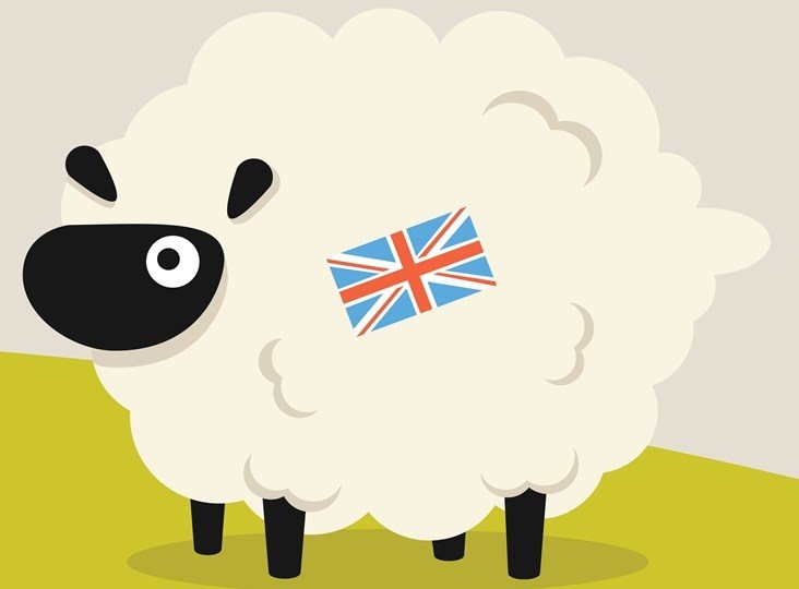 An introduction to the British Wool learning website